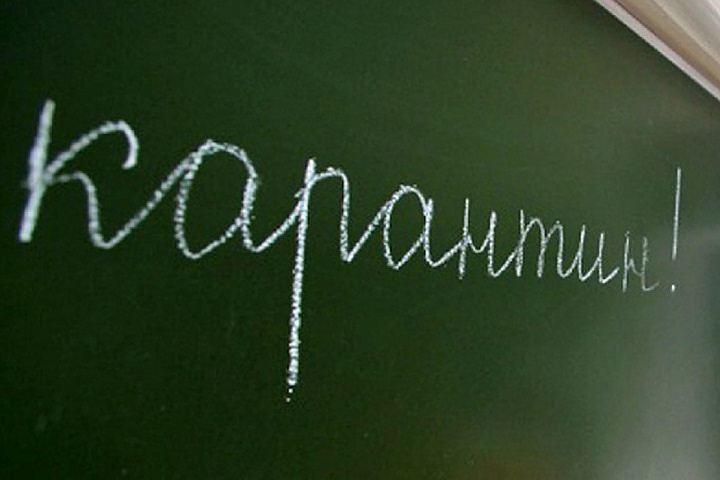 ВНижнем Новгороде 76 школ и4 детсада закрыли накарантин