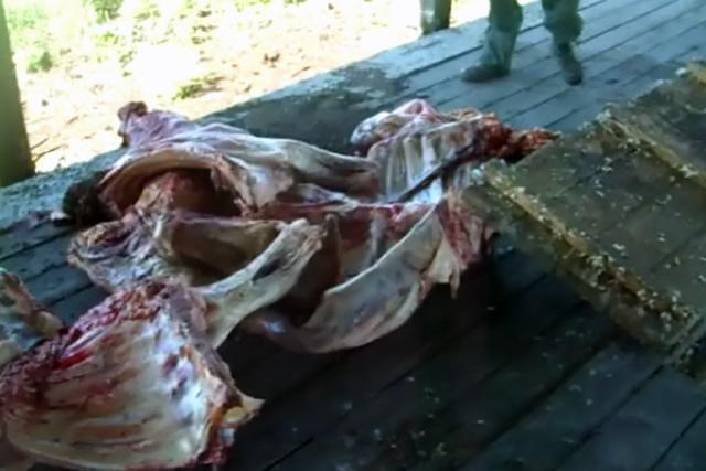 В Хакасии уничтожили опасную мясную продукцию