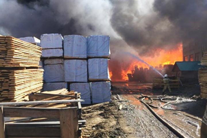 В16 километрах отКодинска полыхает лесоперерабатывающий завод