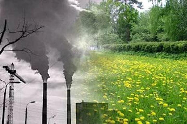 «Зеленый патруль» назвал самые чистые регионы Российской Федерации — Экологический рейтинг