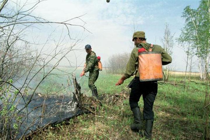 ВСибири засутки площадь лесных пожаров возросла до2 000 га