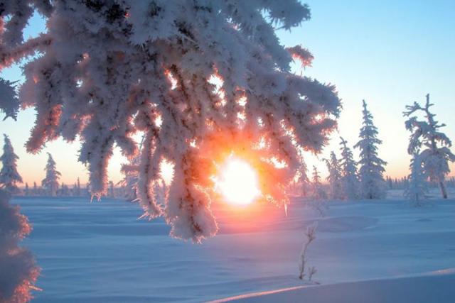 В Северном полушарии - День зимнего солнцестояния
